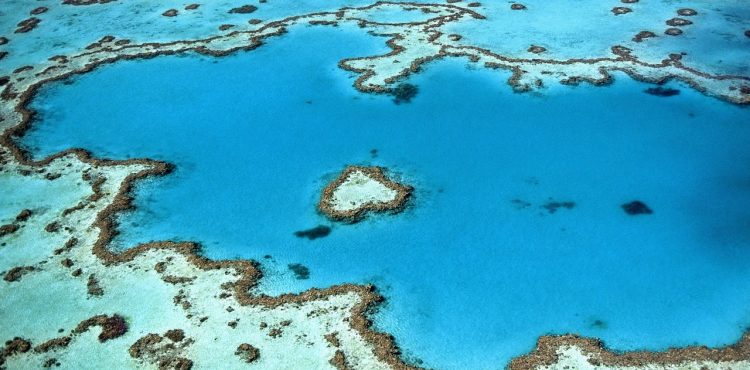 great barrier reef beleefvakantie