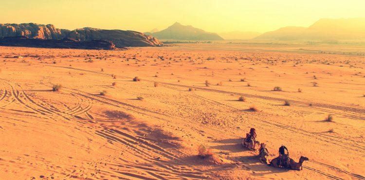 beleefvakantie woestijn