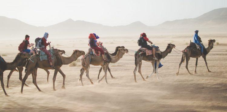 beleefvakantie kameltocht woestijn