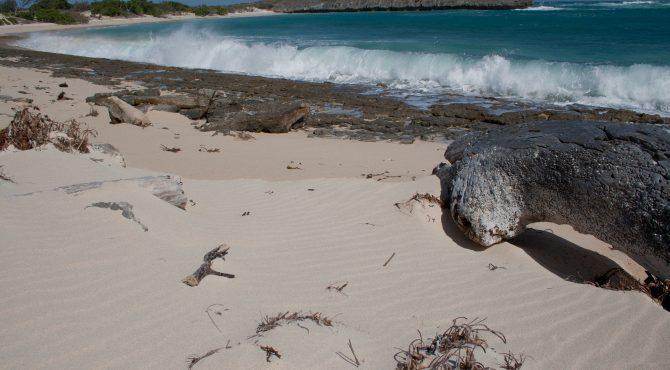 beleefvakantie strand madagascar