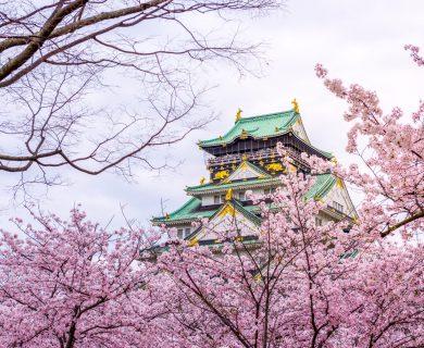 beleefvakantie japan