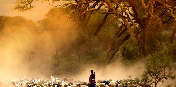 masai mara beleefvakantie