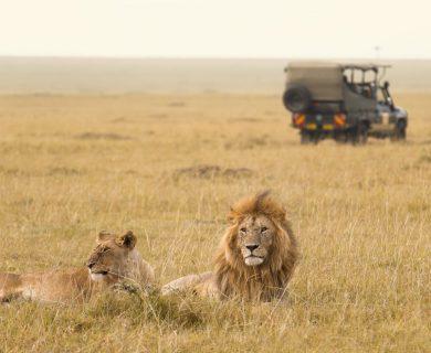 beleefvakantie in kenia
