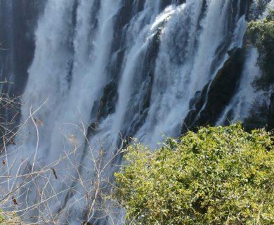 zambia beleefvakantie