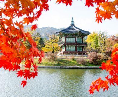 beleefvakantie zuid korea
